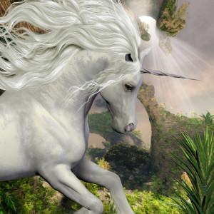 Unicorn - Einhorn